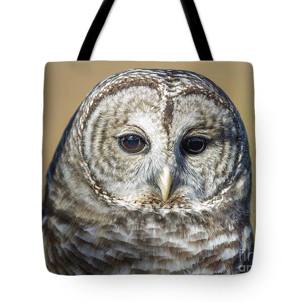 Big Brown Eyes Tote Bag