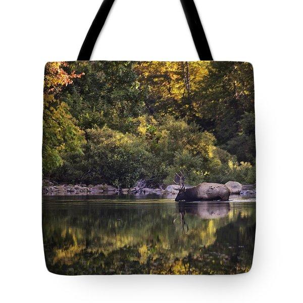 Big Bull In Buffalo National River Fall Color Tote Bag