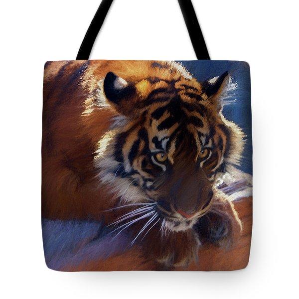 Big Cat In Chalk Tote Bag
