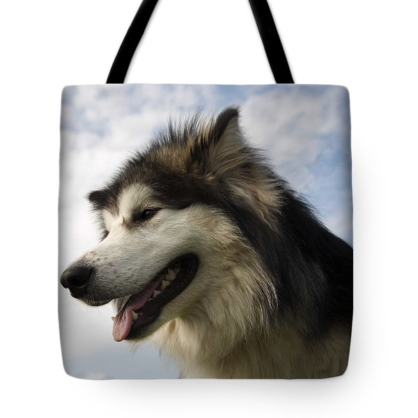 Tote Bag featuring the photograph Big Dog by Christopher Rowlands