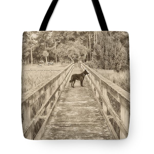 Tote Bag featuring the photograph Big Dog by Margaret Palmer