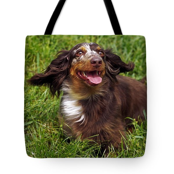 Big Ears Tote Bag by Sally Weigand