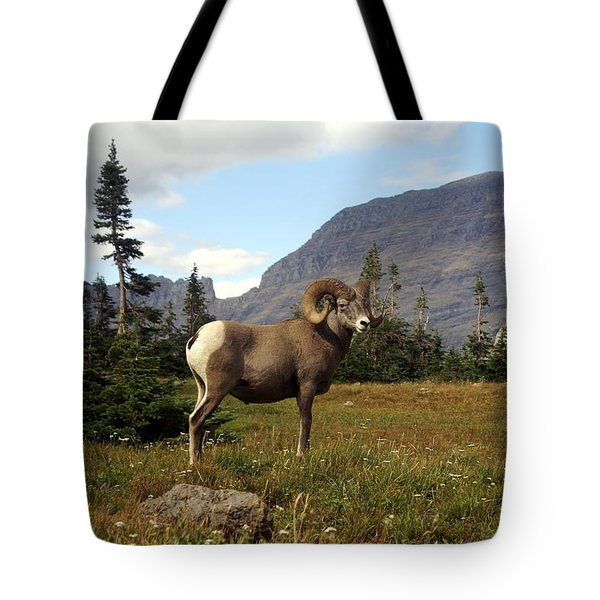 Big Horn 4   Tote Bag by Marty Koch