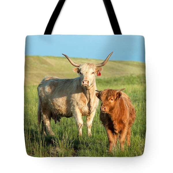 Big Horn, Little Horn Tote Bag by Todd Klassy