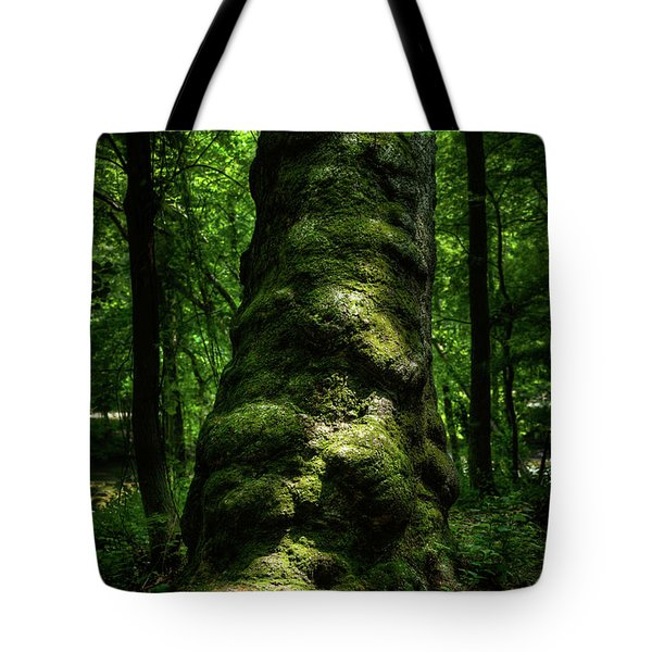 Tote Bag featuring the photograph Big Moody Tree In Forest by Dennis Dame