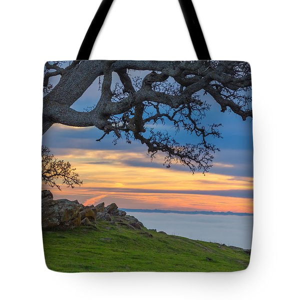 Big Oak Above Fog Tote Bag by Marc Crumpler