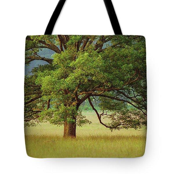 Big Oak Tote Bag