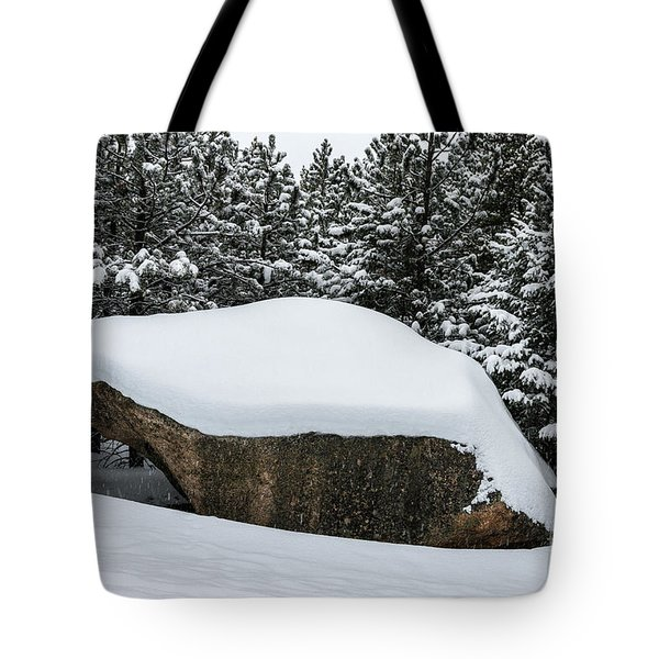 Big Rock - 0623 Tote Bag
