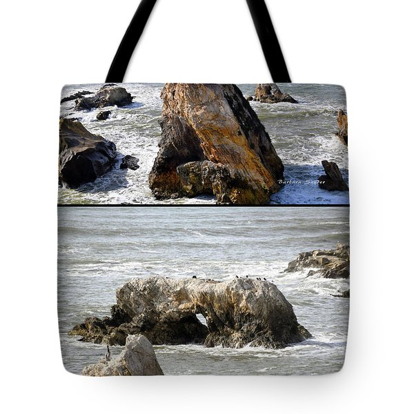 Tote Bag featuring the photograph Big Rocks In Grey Water Duo by Barbara Snyder