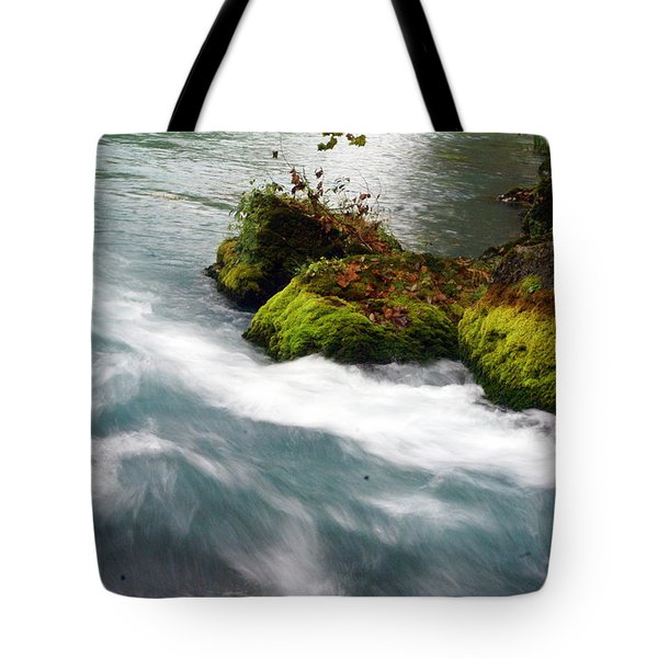 Big Spring Branch 2 Tote Bag by Marty Koch
