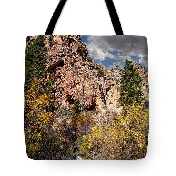 Big Spring In Sheep Creek Canyon Tote Bag