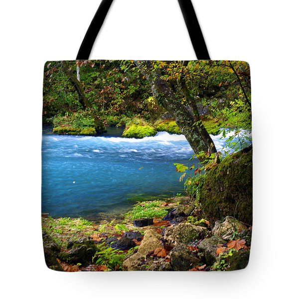 Big Spring Tote Bag by Marty Koch