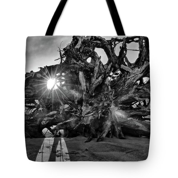 Big Tree On The Beach At Sunrise In Monochrome Tote Bag