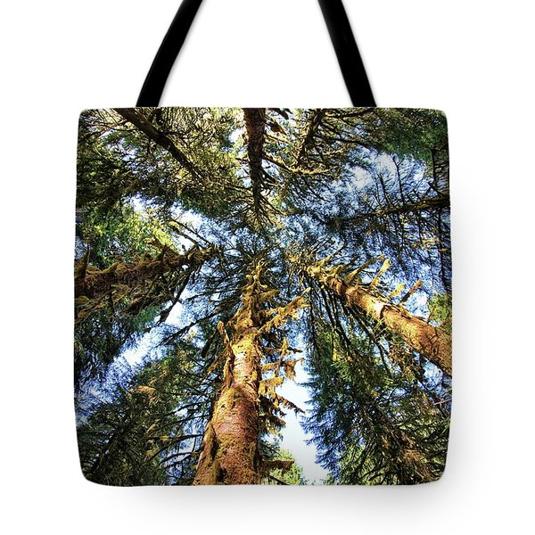 Big Trees In Olympic National Park Tote Bag