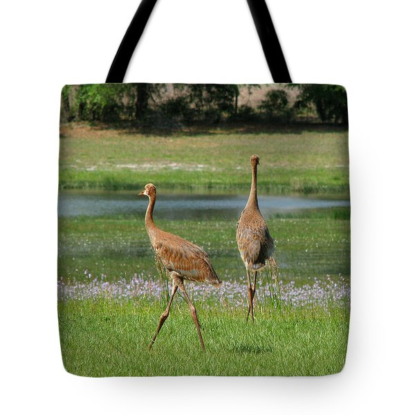 Big World Tote Bag