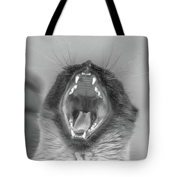 Big Yawn Tote Bag