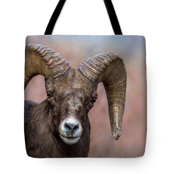 Bighorn Portrait Tote Bag