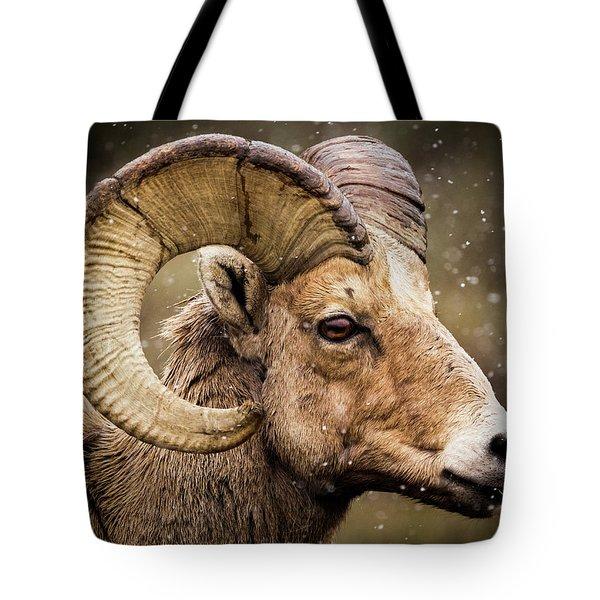 Bighorn Sheep In Winter Tote Bag