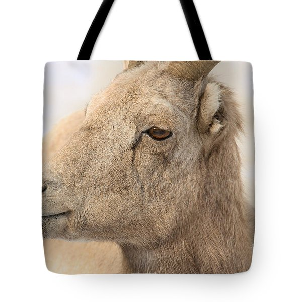 Bighorn Ewe Closeup In A Snowstorm Tote Bag