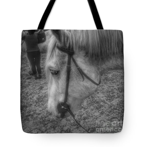 Billie After An Hours Riding.  #horses Tote Bag