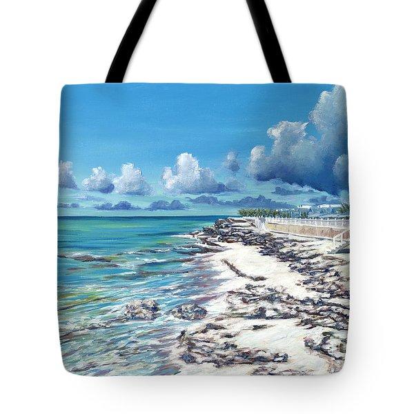 Bimini Breeze Tote Bag by Danielle  Perry