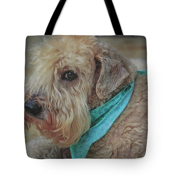 Binkley Tote Bag