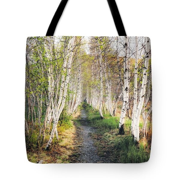 Tote Bag featuring the photograph Birch Alley II by Robert Clifford