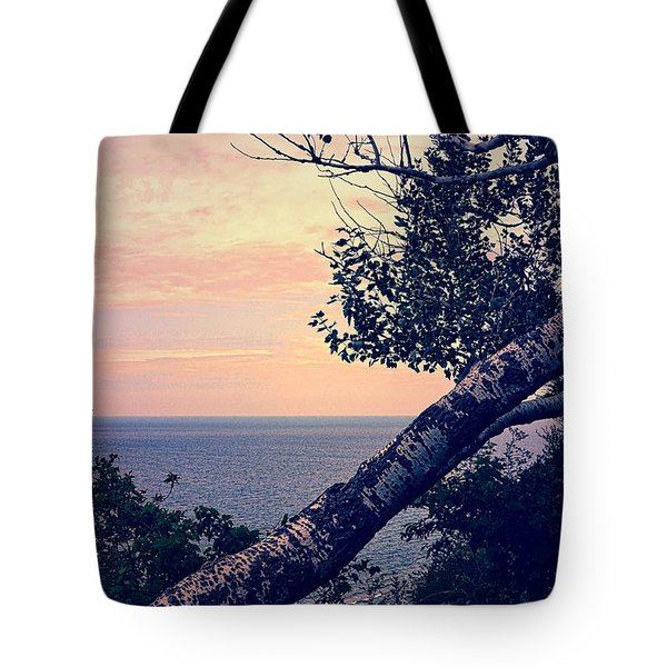 Birch At The Overlook Tote Bag