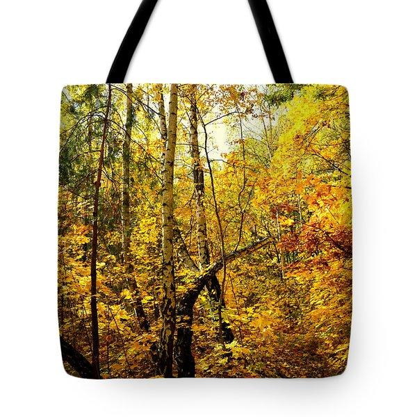 Birch Autumn Tote Bag