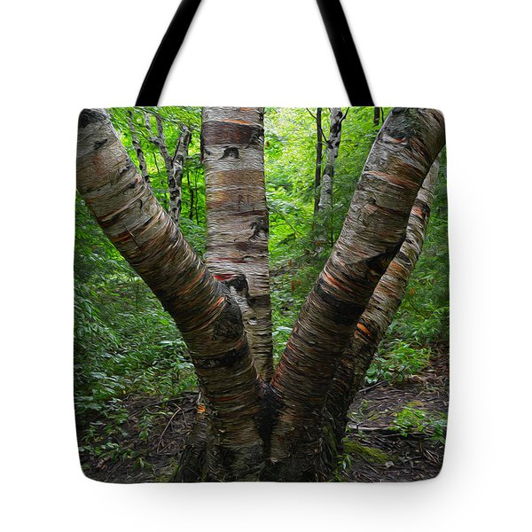 Tote Bag featuring the photograph Birch Bark Tree Trunks by SimplyCMB
