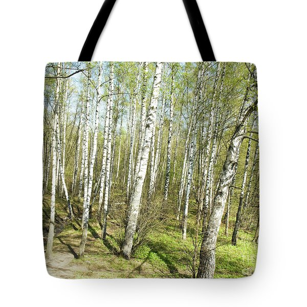 Birch Forest In Spring Tote Bag