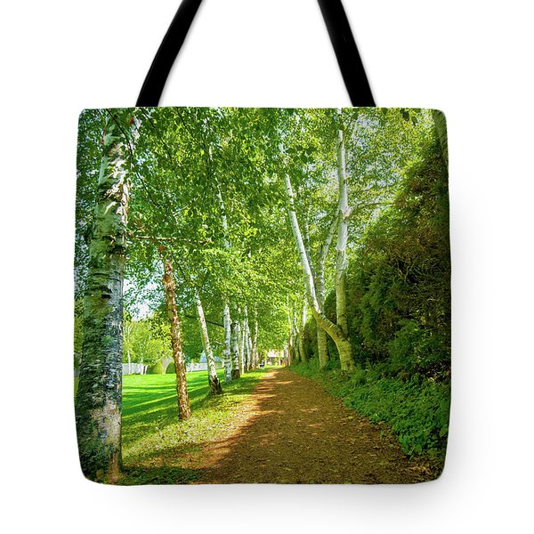Tote Bag featuring the photograph Birch Gauntlet by Greg Fortier