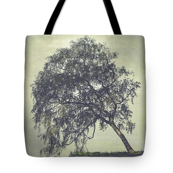 Tote Bag featuring the photograph Birch In The Mist by Ari Salmela