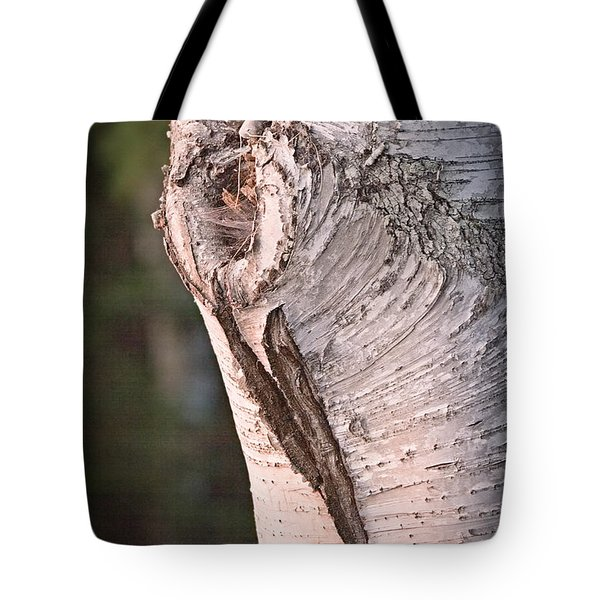 Birch Knot Sunset Tote Bag