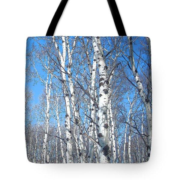 Birch Sky Tote Bag