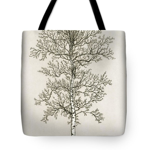 Birch Tree Tote Bag by Charles Harden