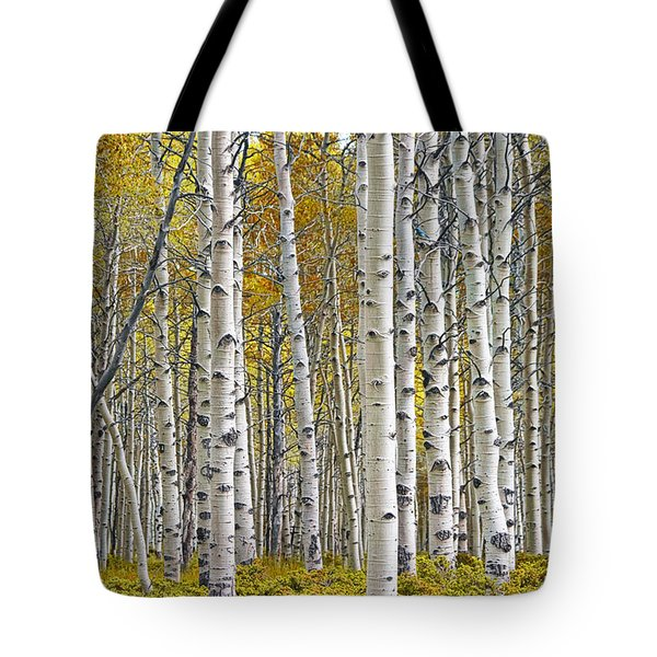 Birch Tree Grove With A Touch Of Yellow Color Tote Bag by Randall Nyhof