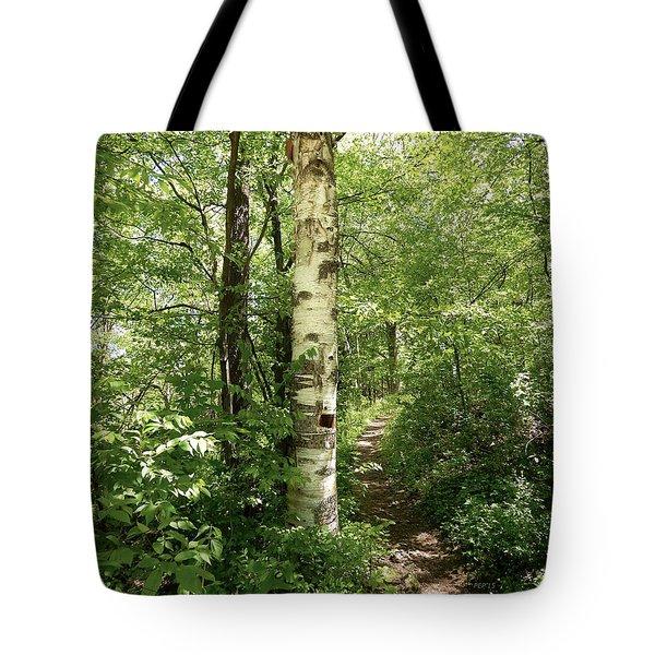 Birch Tree Hiking Trail Tote Bag