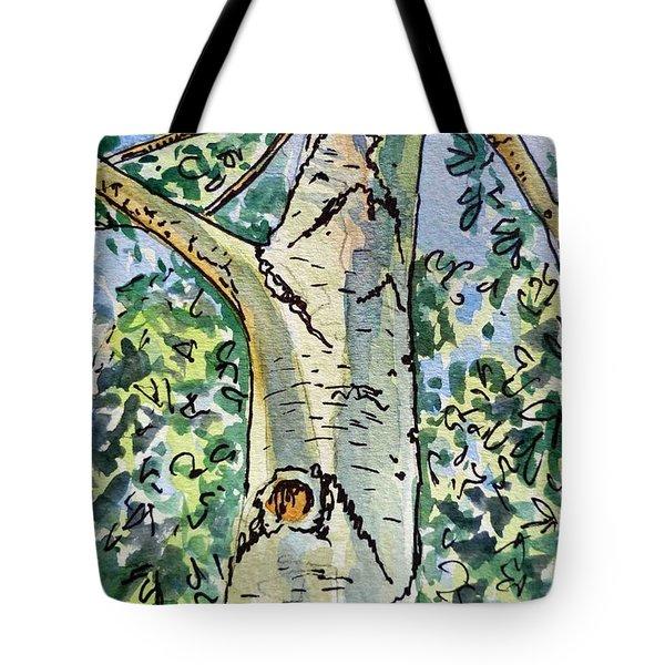 Birch Tree Sketchbook Project Down My Street Tote Bag by Irina Sztukowski