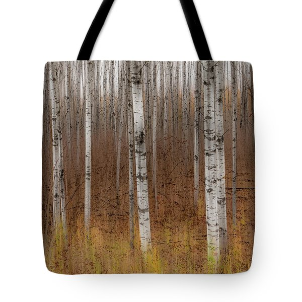 Birch Trees Abstract #2 Tote Bag