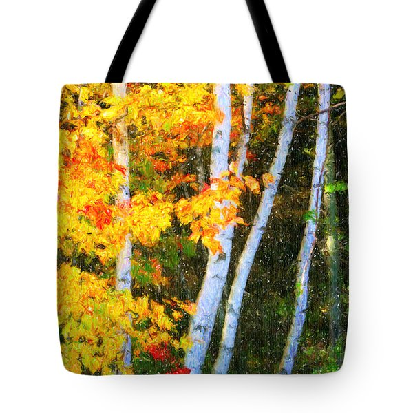 Birch Trees Tote Bag by Verena Matthew