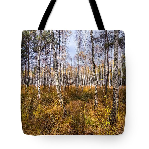 Birches And Grass Tote Bag