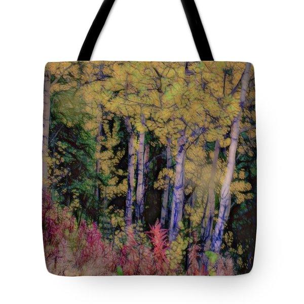 Birches At The Perch #1 Tote Bag