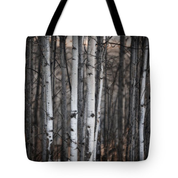 Birches Tote Bag by Diane Dugas