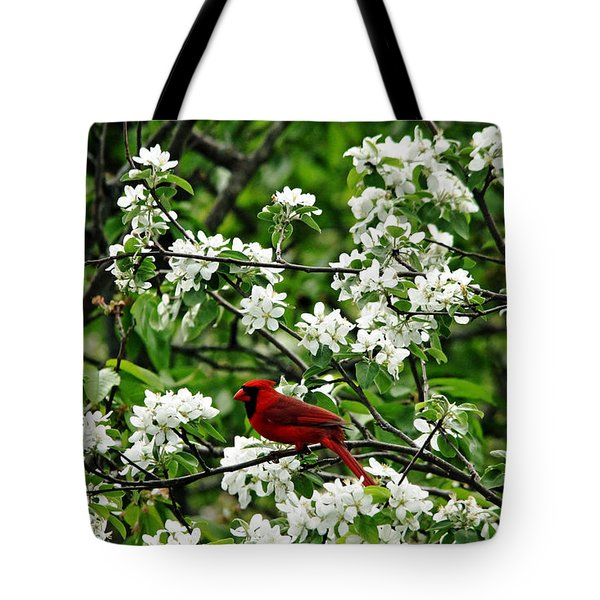 Bird And Blossoms Tote Bag