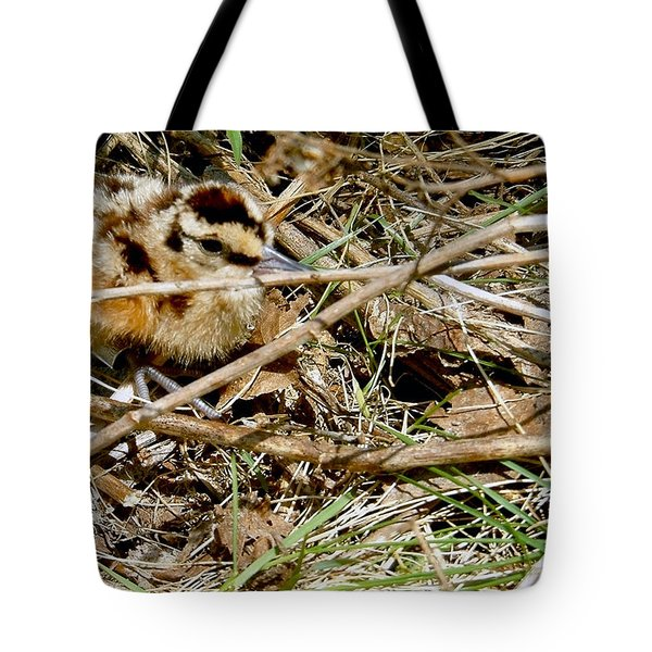 Bird Banding - Woodcock Tote Bag