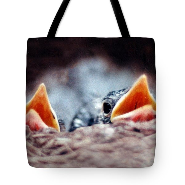 Bird Chick Pair In Nest Tote Bag