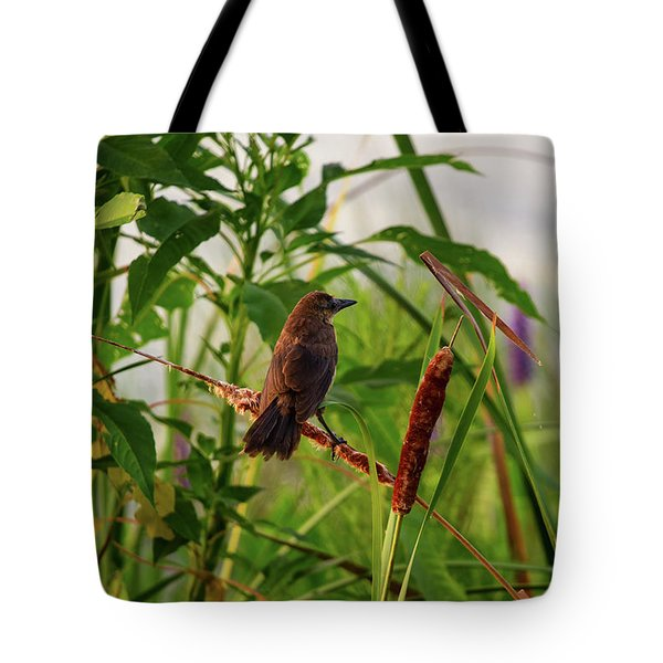 Bird In Cattails Tote Bag