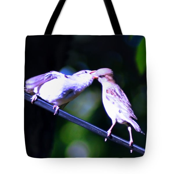 Bird Kiss Tote Bag by Bill Cannon