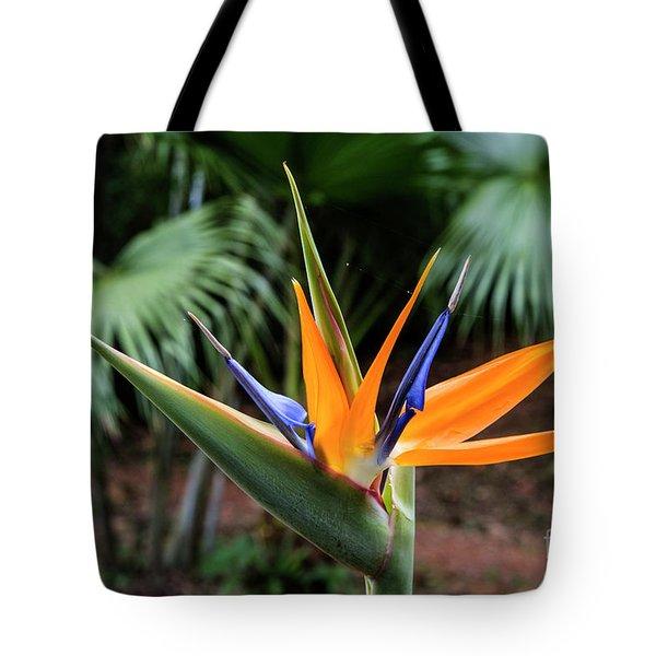 Bird Of Paraadise Tote Bag